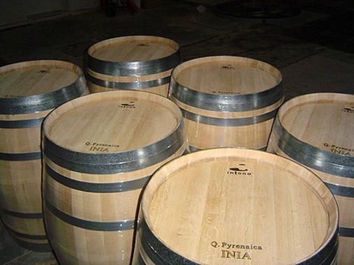 Las-barricas-de-roble-espanol-son-tan-buenas-para-el-vino-como-las-americanas-o-las-francesas_image_380.jpg