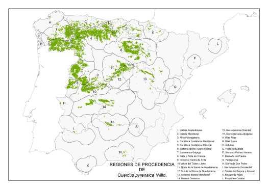 map_Quercus_pyrenaica_tcm7-285943.jpg